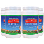 Bloommin Minerals 4-pack