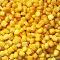 Corn, Sweet freeze dried